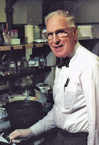 Prof. Israel Zelitch